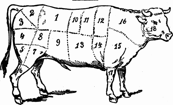 cuts-of-meat-beef